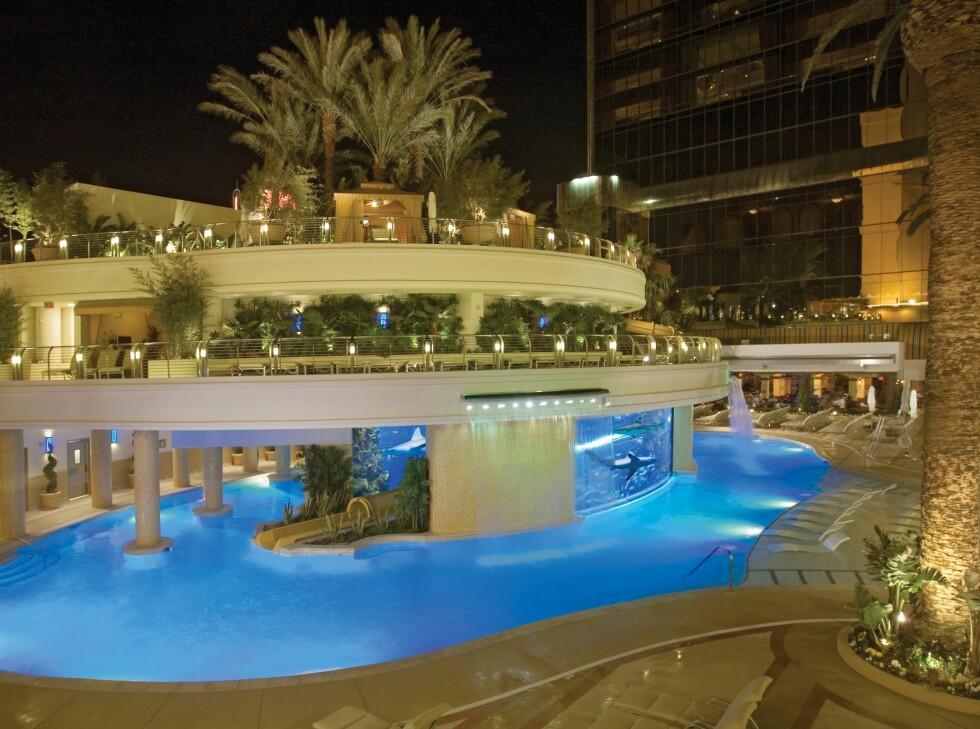Du kan svømme med haiene på Hotel Golden Nugget i Las Vegas. Vannsklia går gjennom tanken som haiene svømmer i - selvsagt separert med glassvegger. Foto: Hotel Golden Nugget