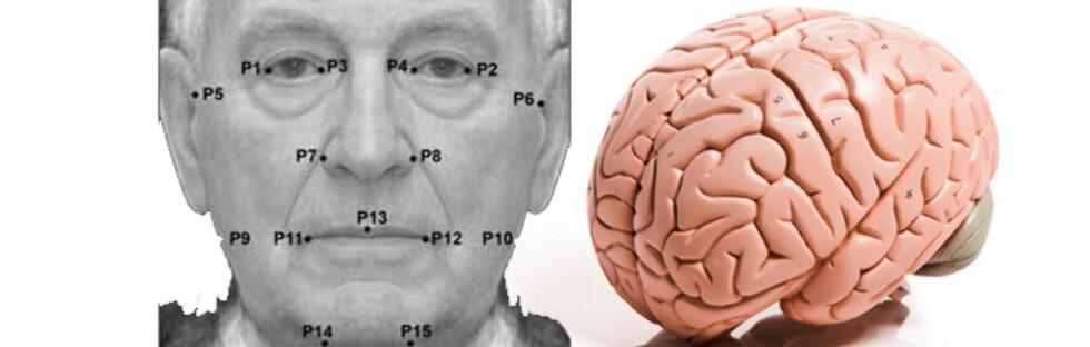 SYMMETRI: Et bilde sammensatt av ansiktene til 50 av forsøkspersonene viser punktene som brukes for å måle symmetri.  Foto: Montasje: University of Edinburgh og Colourbox.com