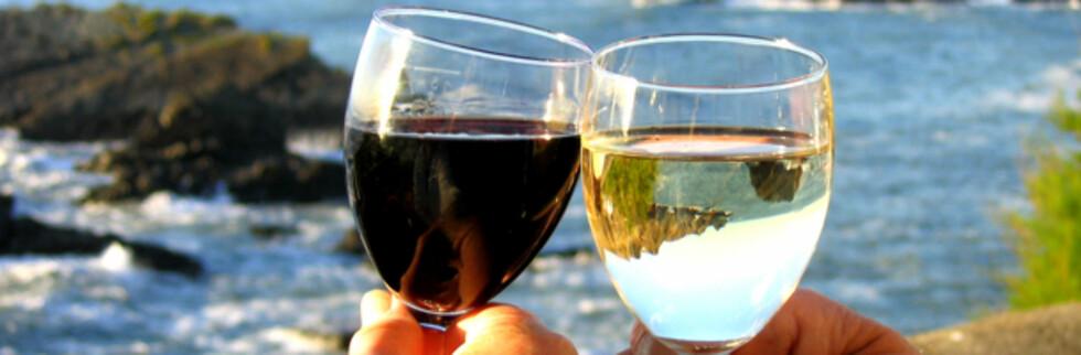 Nå kan du fint importere vin og sprit til privat bruk. Foto: Stuart Bell