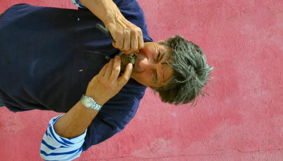 Ingen nåde når østersfarmer Gilles Dupuy får lyst på en østers. Foto: Stine Okkelmo