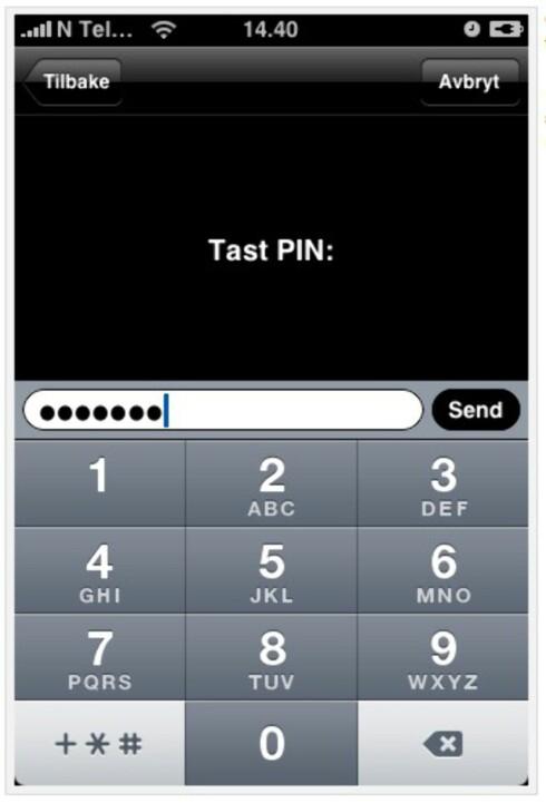Slik ser det ut når du logger deg inn på Skandiabanken med iPhone.(Faksimile: Skandiabanken.no)