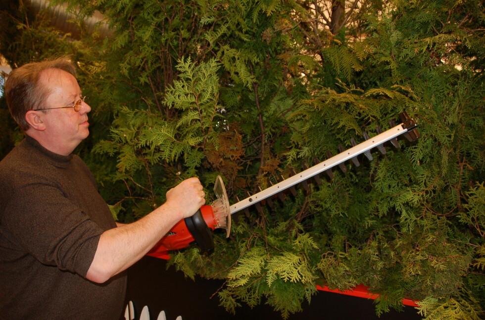 DinSides handymann Brynjulf Blix har prøvekjørt Black & Deckers nye hekkesaks.  Foto: Elisabeth Dalseg