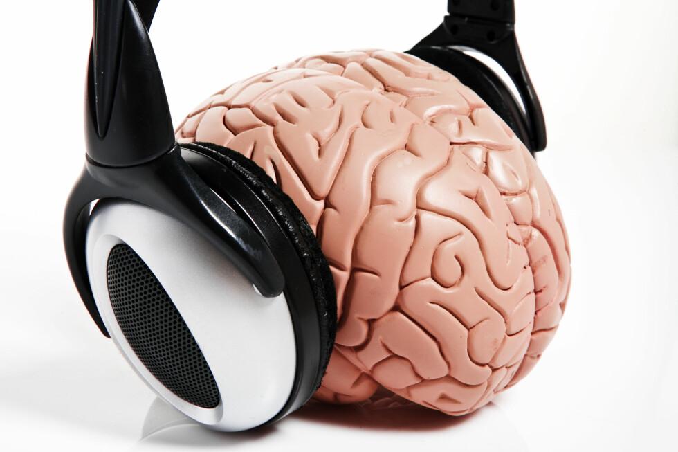 Etter at du har fylt 27 begynner hjernen sakte men sikkert å slutte å lytte.  Foto: colourbox.com