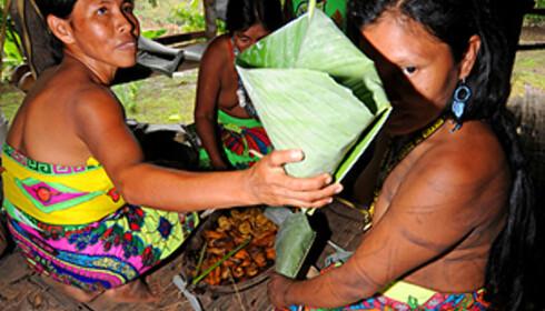 Emberá kan by på en særdeles lærerik og fin kulturopplevelse med god mat. De er gratis, men sørg for at du kjøper med deg noe av det de har å selge til de få turistene som kommer hit.   Foto: Hans Kristian Krogh-Hanssen