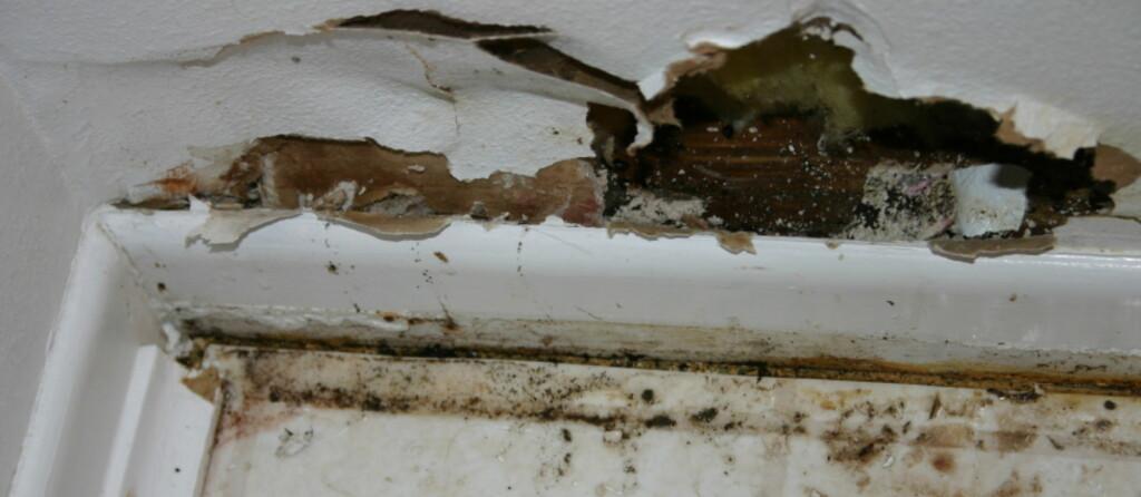 Er ikke håndverket godt nok, oppstår det lettere skader.  Foto: iStock