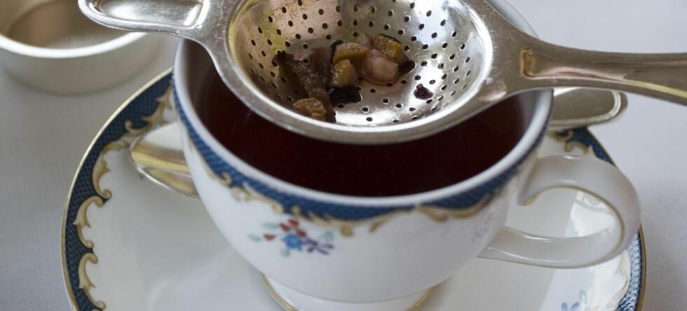 Te lages av blader og knopper fra teplanten Camellia sinensis. Alle varianter av te, slik som grønn, oolong eller sort, kommer fra denne arten, men bearbeides forskjellig. Foto: Colourbox