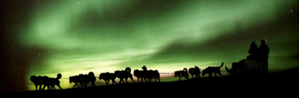 Velg ferie med omhu, og du vil få gode opplevelser OG god samvittighet. Foto: Svalbard Villmarkssenter