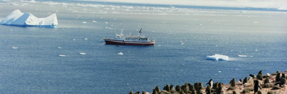 Det er ingen spøk å delta på cruise i Antarktis. Dette bildet viser MS Explorer, som sank i 2007, etter å ha kollidert med et isfjell. Foto: Mila Zinkova