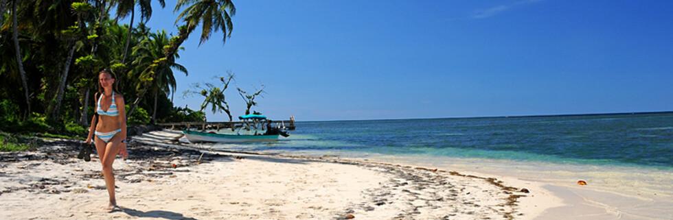 Bocas del Toro - for deg som vil hoppe inn i et postkort.  Foto: Hans Kristian Krogh-Hanssen