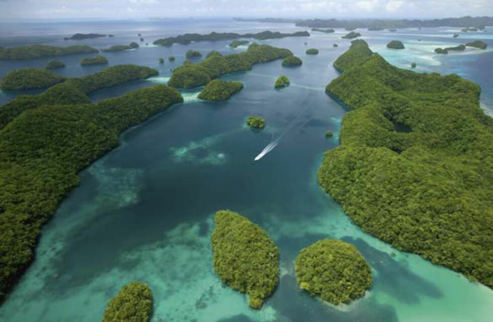 Rock Islands i Palau i Stillehavet.  Foto: Millennium House