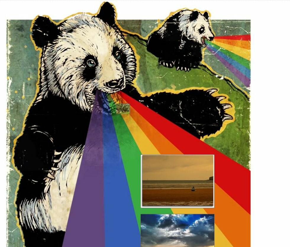 Flickr har laget en pandastisk løsning for deg som vil se fine bilder. Foto: Flickr.com