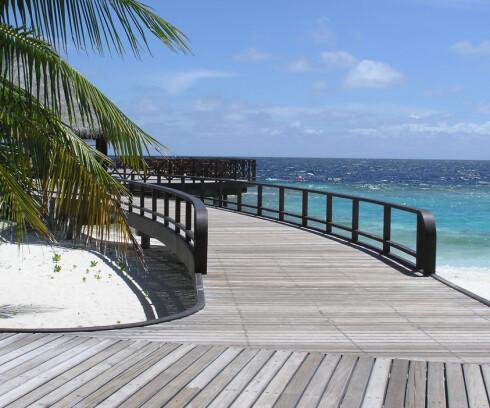 Har du alltid drømt om å dra til Maldivene kan du gjøre et kupp nå! Fly koster under 2.000 kroner! Foto: Colourbox