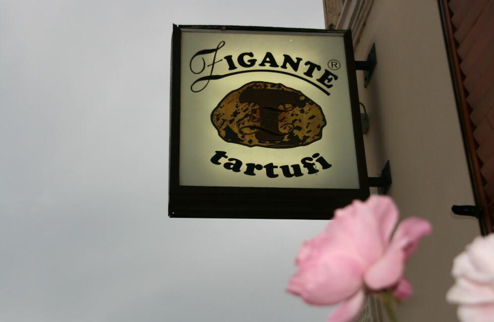 Zigante Tartufi - butikken hvor du finner alle slags delikatesser med trøfler. Foto: Astrid Mannion