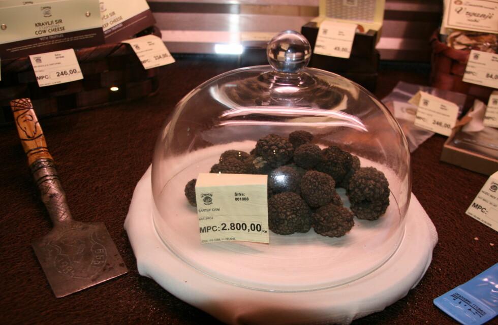 Sorte trøfler i trøffelbutikken Zigante Tartufi. Foto: Astrid Mannion