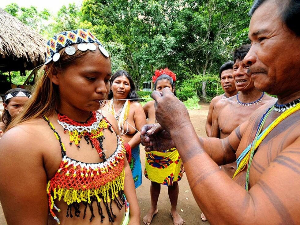Emberá-indianere utfører et rituale i jungelen mot den colombianske grensen.  Foto: Hans Kristian Krogh-Hanssen