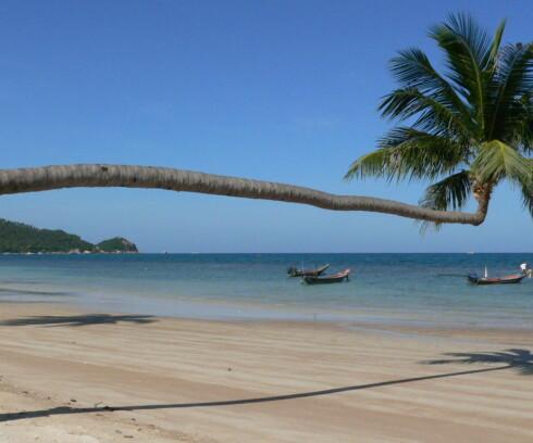 Ko Tao, Thailand Foto: Sue Pizarro/Stock.XCHNG