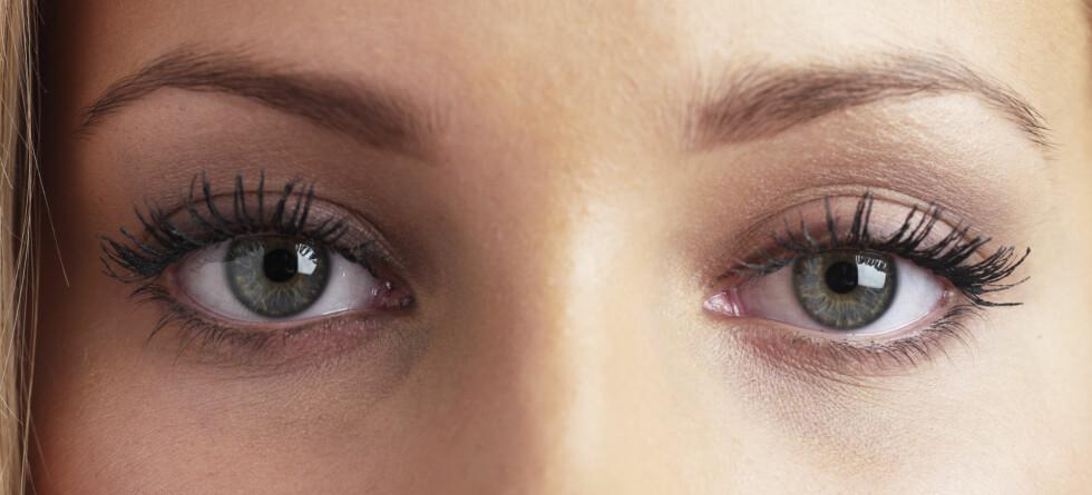 Øyne som er blinde pga. genfeilen LCA kan få synet tilbake. Foto: Colourbox