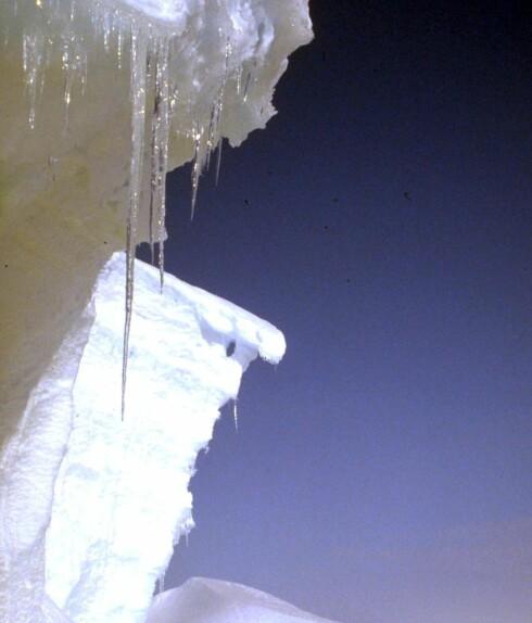Mellom 70 og 80 prosent av verdens ferksvann er i isbreer.  Foto: Colourbox.com