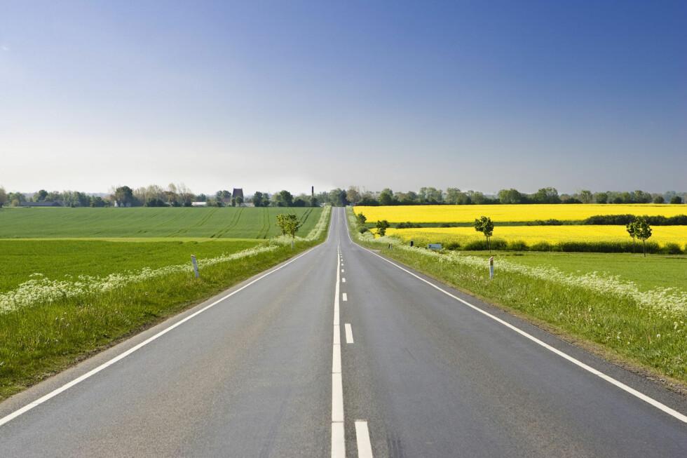 Åpne landskap er best for bilistene. Foto: Colourbox.com
