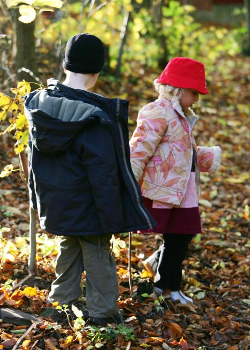 Høsten er en perfekt tid for turer i skog og mark. Bruk fantasien, og gå på oppdagelsesferd med barna.  Foto: colourbox.com