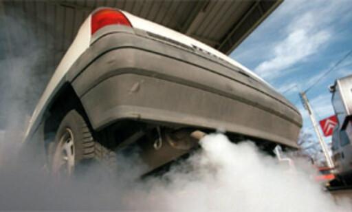 image: Slakter diesel-vennlig rapport