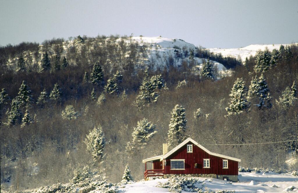 Når utgiftene blir for store, er hytta ofte det første som ryker. Foto: Colorbox.com