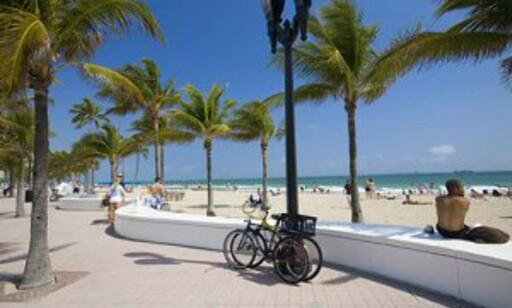 Hvite palmestrender i Fort Lauderdale. Foto: Star Tour