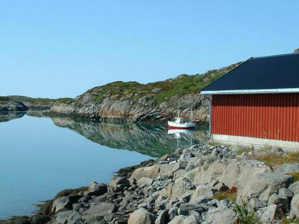 Det er landbruk som er den største næringen på Vegaøyene, men fiske er også viktig. Foto: Marian Lie Johansen
