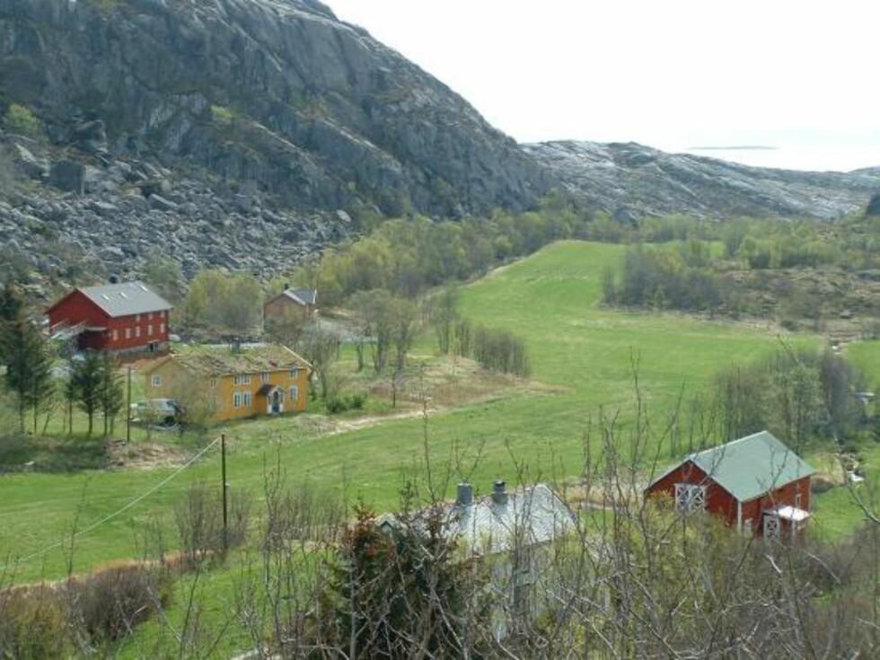 Fra Hestvik på øya Vega. Foto: Marian Lie Johansen