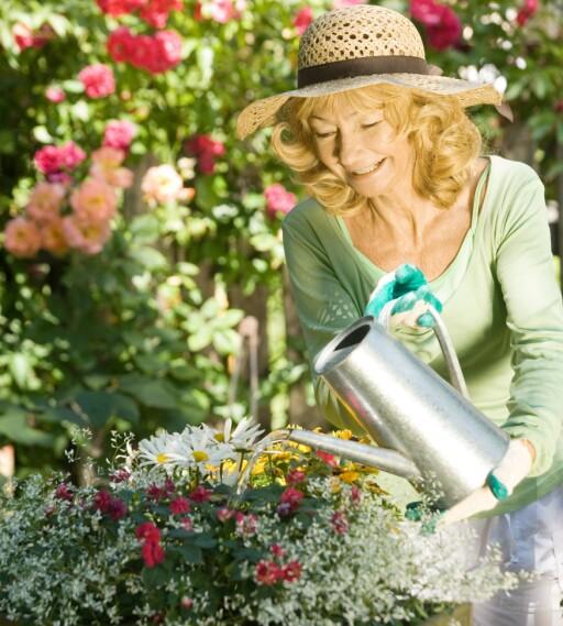 Holder klisjeen ved like: Det er kvinnene som står for luking og vanning.  Foto: Colourbox.com