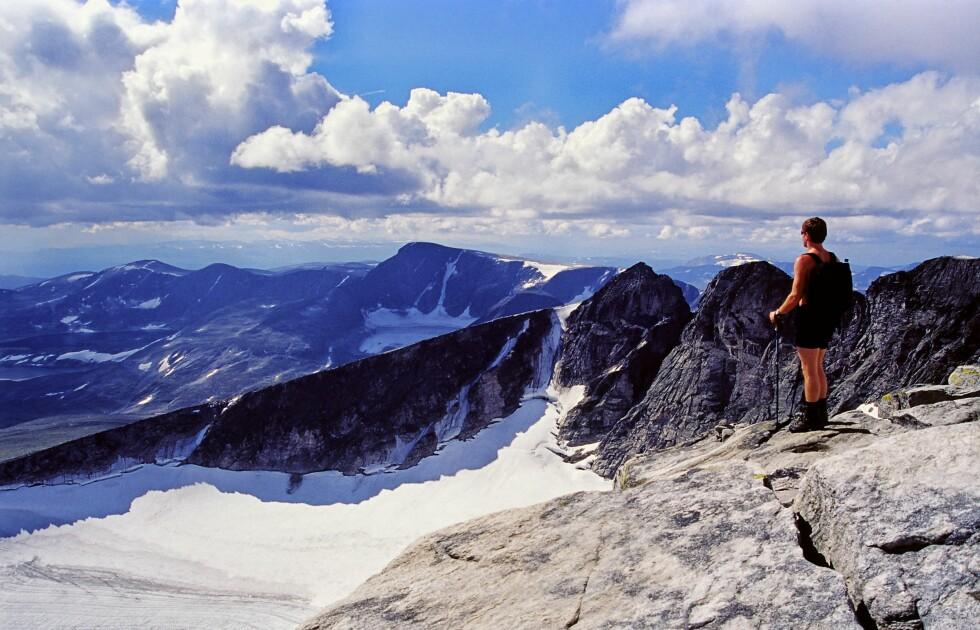 Dovre Nasjonalpark skal gjøres mindre tilgjengelig. Foto: Anders Gjengedal/Innovasjon No