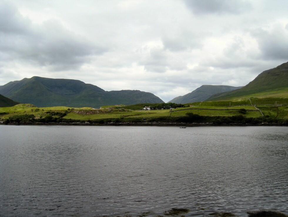 Ikke rart Irland blir kalt den grønne øya. Foto: Stine Okkelmo