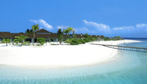På Maldivene kan drømmeferien bli til virkelighet. Foto: Star Tour