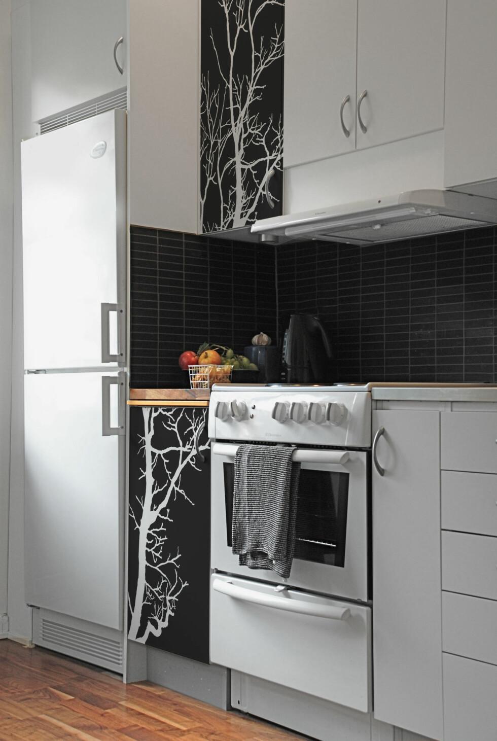 ingen legger merke til at kjøleskapet er litt skeivt... De svarte foliene tar mesteparten av opplevelsen. Foto: Dodeci