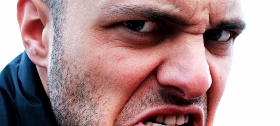 Ansiktets bredde kan linkes med aggresjon hos menn, mener forskere. Illustrasjonsfoto: Emiliano Spada/xc.hu