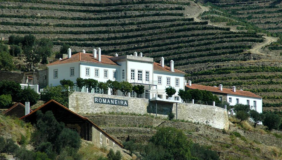 Et av de mer kjente vingodsene langs Douro.