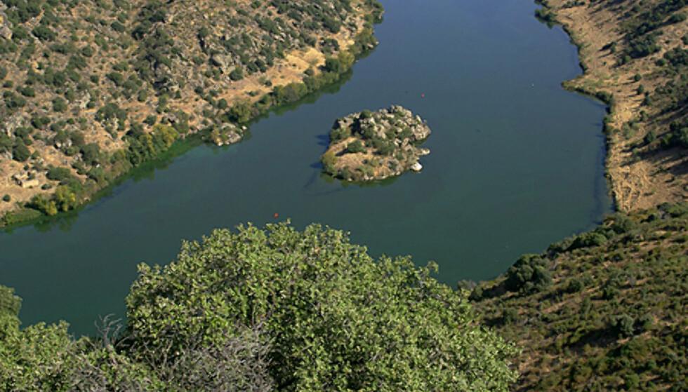 Douro på vei inn i Spania.