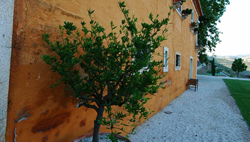 Quinta Do Vallado gir deg smaken av å bo på et ekte vingods.  Foto: Hans Kristian Krogh-Hanssen