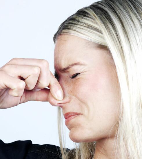 Dårlig ånde? Da bør du spise oftere slik at spyttproduksjonen øker. Illustrasjonsfoto: Colourbox