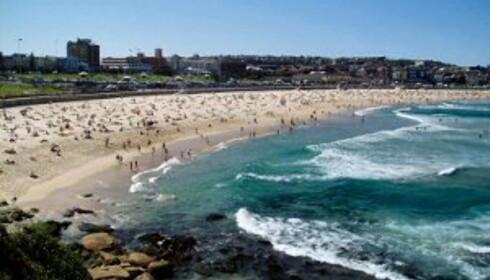 Er du først i Sydney, må du ta deg noen timer på Bondi Beach.