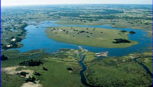 En litt annerledes safaridestinasjon i Botswana. Foto: UCL Department of Geology