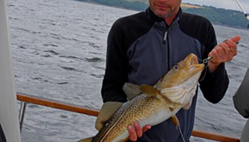 Østersjøtorsken er på vei tilbake - nå får du fangstgaranti som turist.  Foto: Christian Skauge