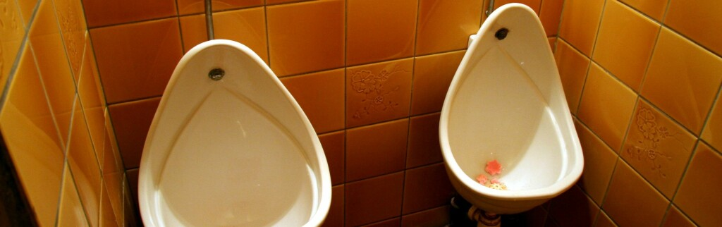 Ordentlige toaletter er ikke et vanlig syn på den indiske landsbygda. Illustrasjonsfoto: Colourbox.com
