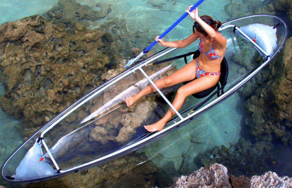 Når vannet er så klart som dette blir opplevelsen optimal. Men du bør kanskje passe deg litt for hvor du drar på tur med denne kanoen. Eventuelle haier har for eksempel god utsikt til hva som er til middag hvis du padler rundt slik - men du kan i det minste se dem når de svømmer opp for å ta deg. Foto: See Through Canoe