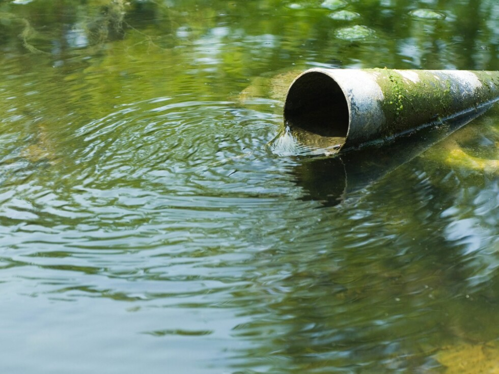 Nå kan du enkelt og greit sjekke vannkvaliteten på alt vann i Norge på nettet. Foto: colourbox.com