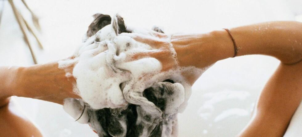 Blir det slutt på billig frisørshampo på Nille, kan det kanskje spøke for andre som har benyttet seg av det samme trikset også.  Foto: Colourbox.com