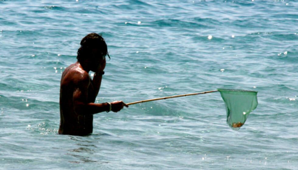 Denne mannen sørger for at manetene blir fjernet fra et av der populære badestedene på Ibiza. Foto: Kim Jansson