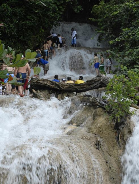 I Dunn's River Falls kan du vasse i James Bonds fotspor. Her helt nederst i fossen. Foto: Glenn Pebley Foto: Glenn Pebley