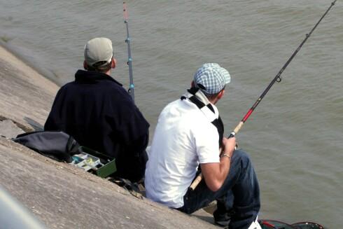 Slapp av på brygga med gode kompiser og en fiskestang. Illustrasjon: colourbox.com Foto: colourbox.com