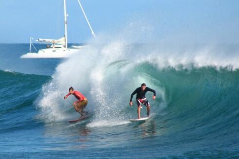 Klarer dere disse bølgene? Illustrasjon: Diane Groves Foto: Diane Groves